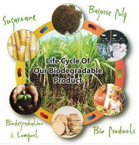 Biodegrdable Plastic Malaysia